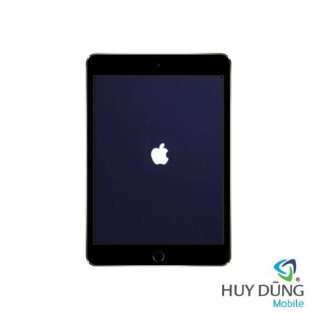 Sửa iPad Mini 1, 2, 3, 4, 5 treo táo