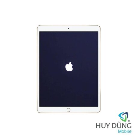 iPad Pro 12.9 inch 2017 bị treo táo