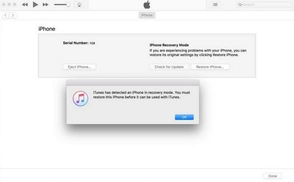 hãy chuyển sang màn hình iTunes và nhấp vào nút