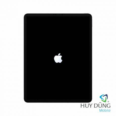 iPad Air 4 bị treo táo